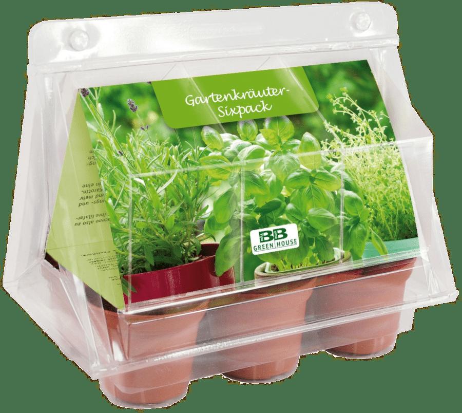 Mini Gewächshaus Kräutergarten - Geschenk für Opa