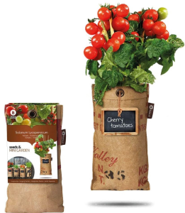 Gemüse selbst anbauen - Mini Gemüsegarten