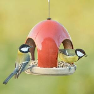 Vogelhaus - Vatertagsgeschenk